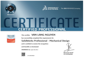 Chứng chỉ SOLIDKS Professional